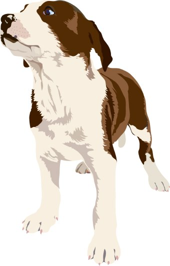 Clip art of a brown and white dog.
