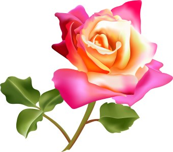 http://www.dailyclipart.net/wp-content/uploads/medium/Flower9.jpg
