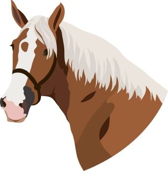 http://cdn.dailyclipart.net/wp-content/uploads/medium/Horse6.jpg