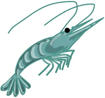 Clip art of a shrimp with its antennae bent back
