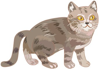 Clip art of a grey striped pet tabby cat with yellow or golden eyes