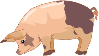 Clip art of a pink and brown pig standing in profile