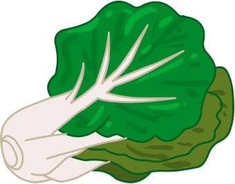 Image Result For Green Leaf Dog