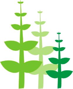Green Plants clip art